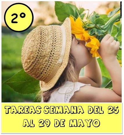 2º TAREAS DEL  25 AL 29 DE MAYO