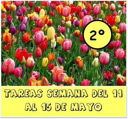 2º.  TAREAS DEL 11 AL 15 DE MAYO